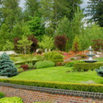 The Landscaping Pros